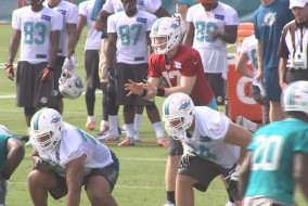 DOLPHINS CAMP PIC00000000