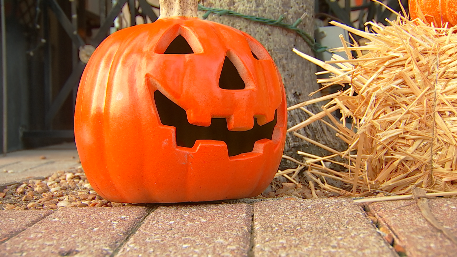 A Halloween pumpkin. Photo via WINK News.