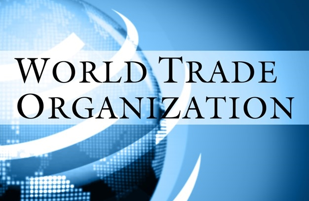 a case study on the first wto case against china by the united states