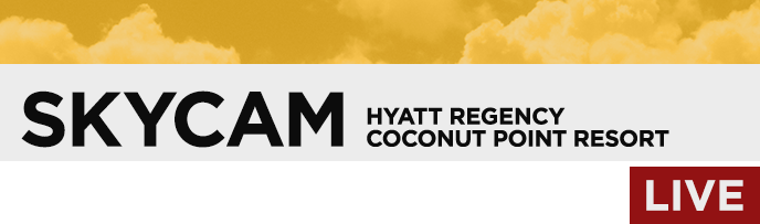 Hyatt Coconut Point Cam
