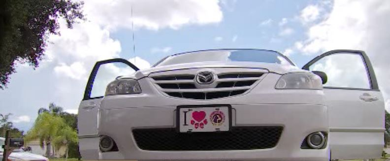 Lee auto group s business practices questioned wink news for Finnicum motors lee county
