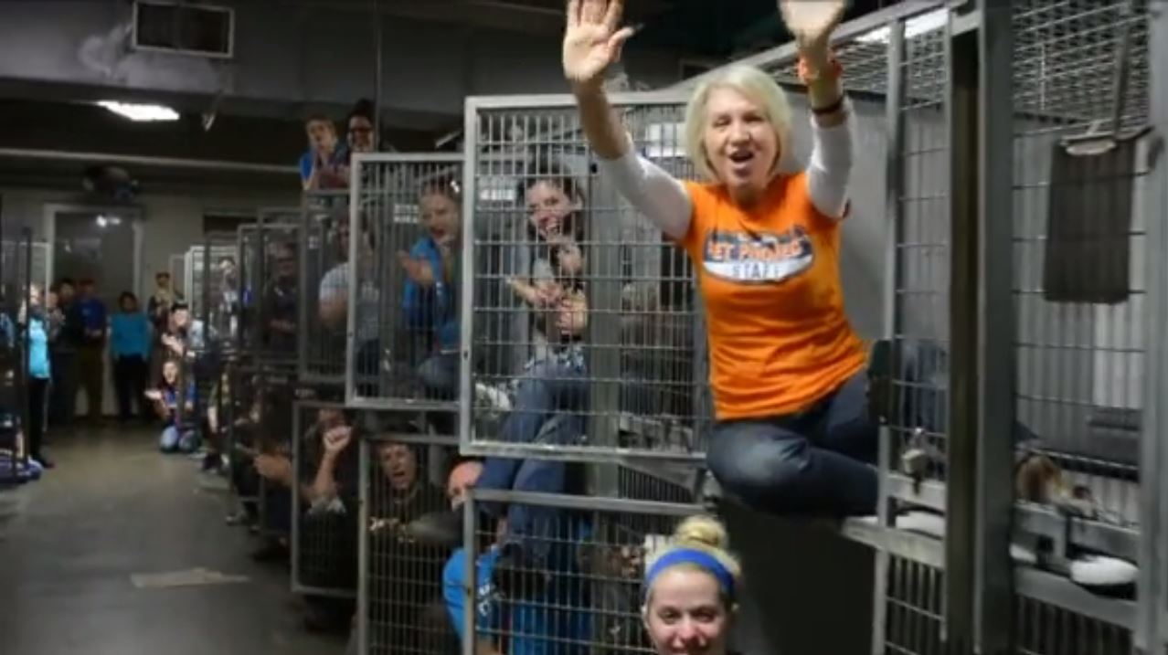 No Kill Shelter Celebrates Adoptions Inside Empty Cages