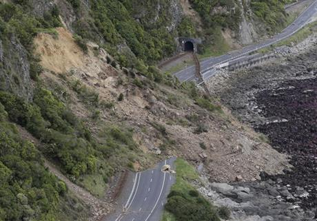 After Powerful Quake, Tourists, Residents (And Cows) Stranded In New Zealand