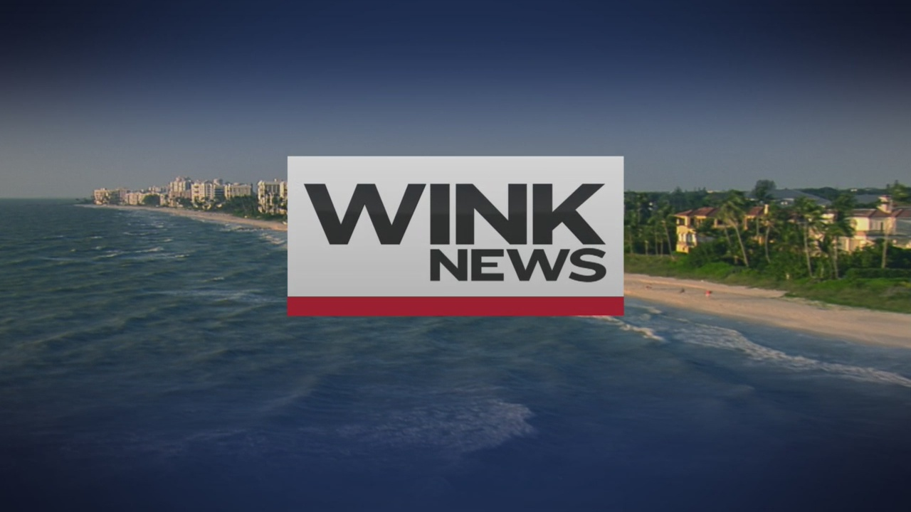 WINK News at Noon