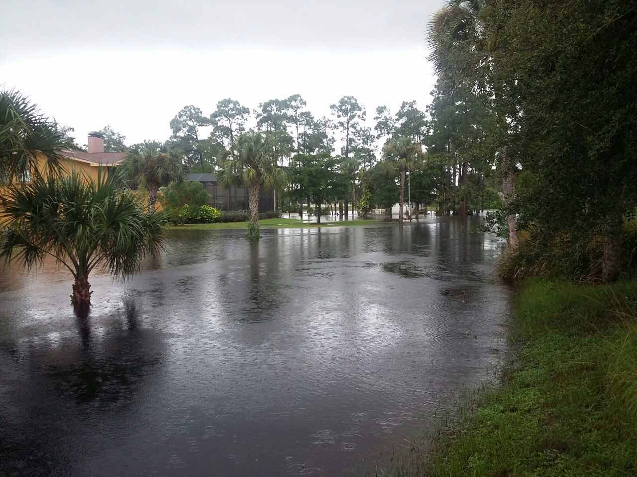 Heavy rain, storms cause flooding in SWFL