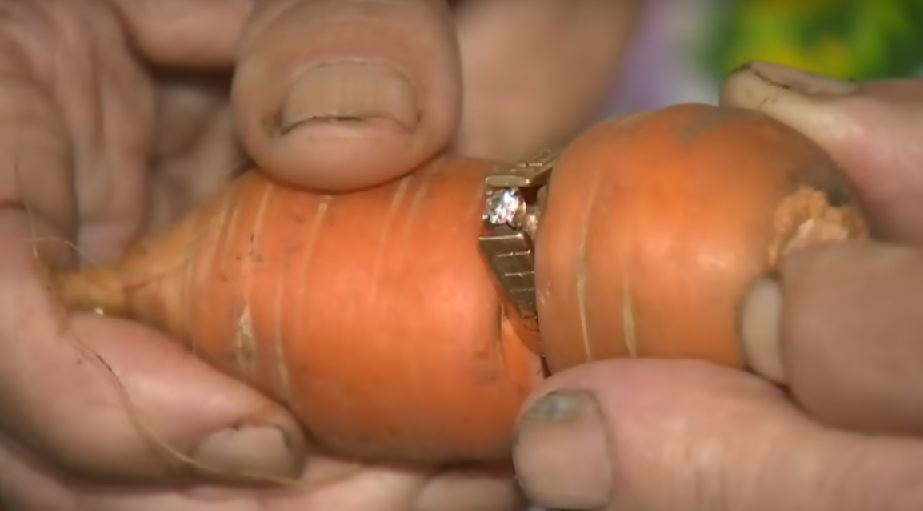 How a carrot found my diamonds