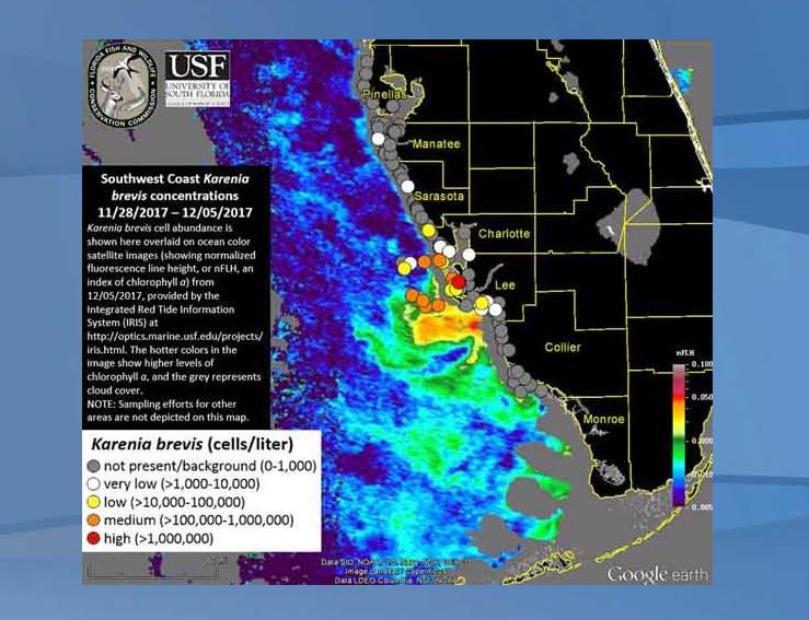 Red Tide Forecast For Collier County This Weekend