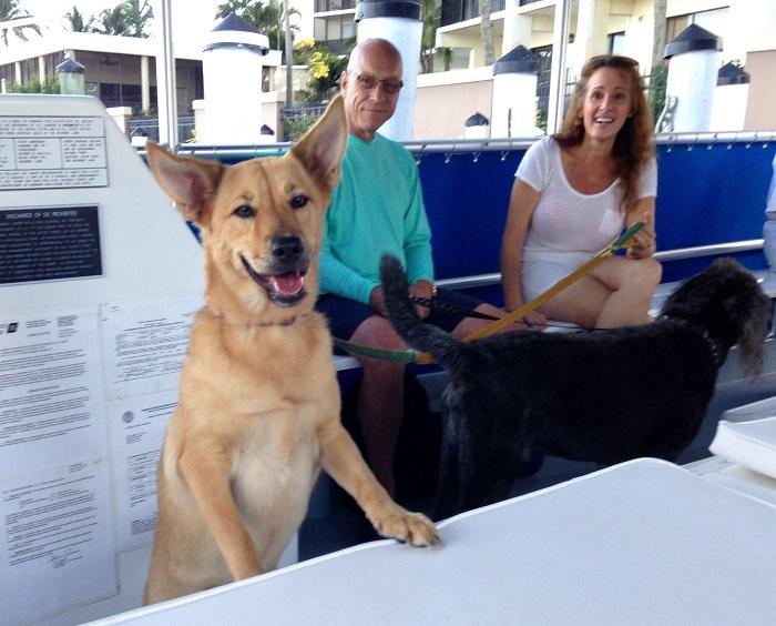 Bark on the Ark Doggie Cruise