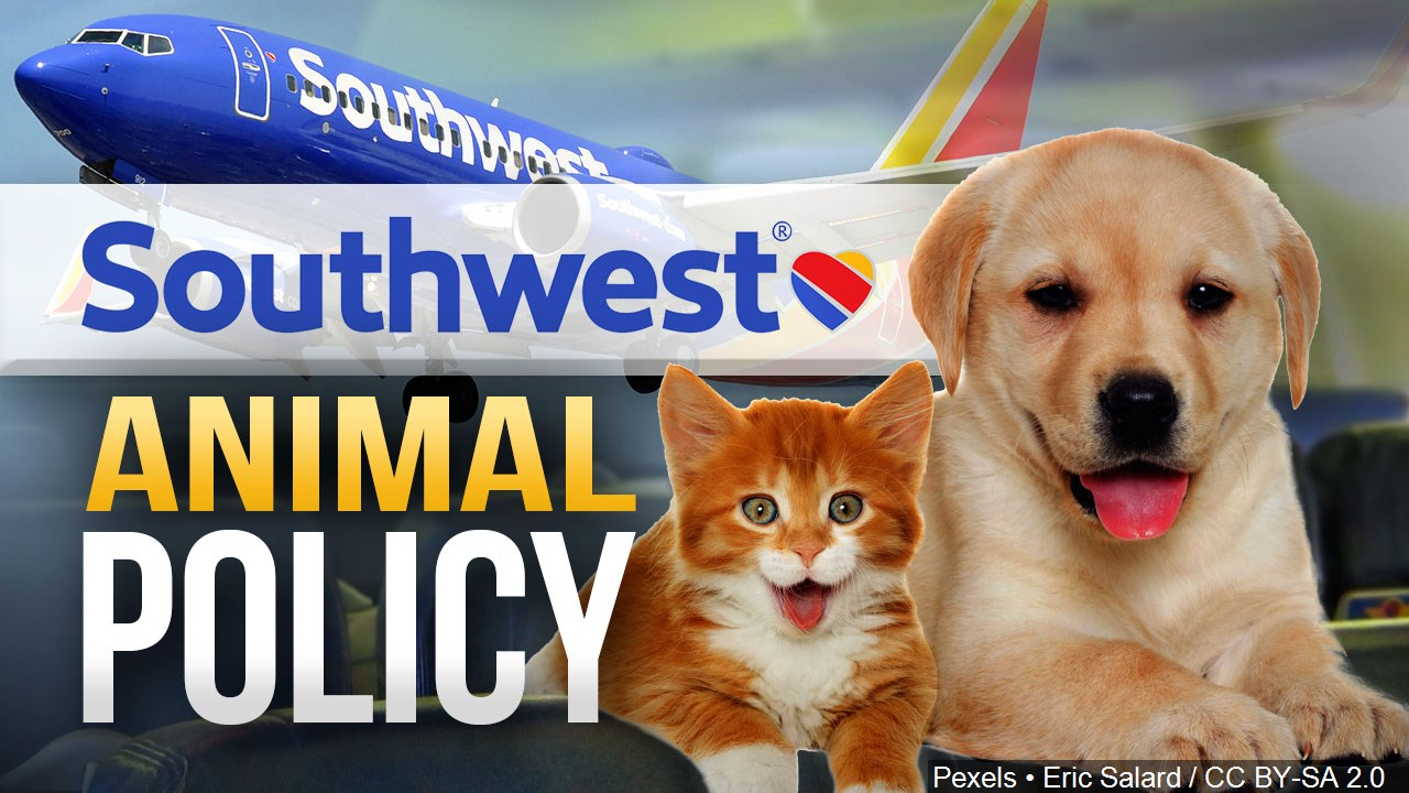 Southwest Airlines Bans Exotic Emotional Support Animals