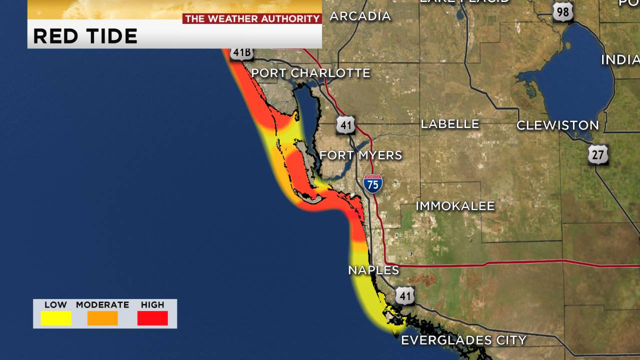 Red Tide Showing Improvements In North Captiva Collier County