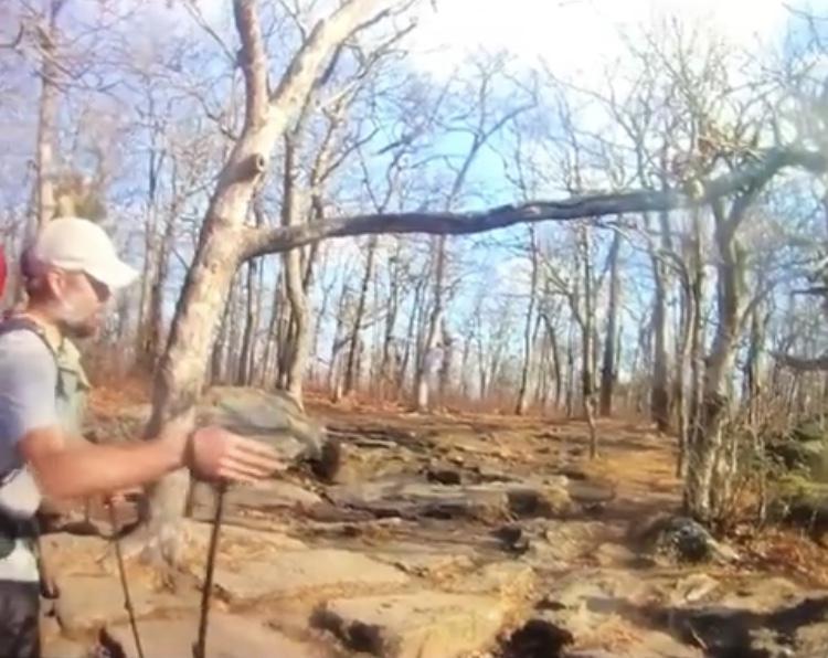 Collier Deputies Release Video Of Hiker Prior To Death