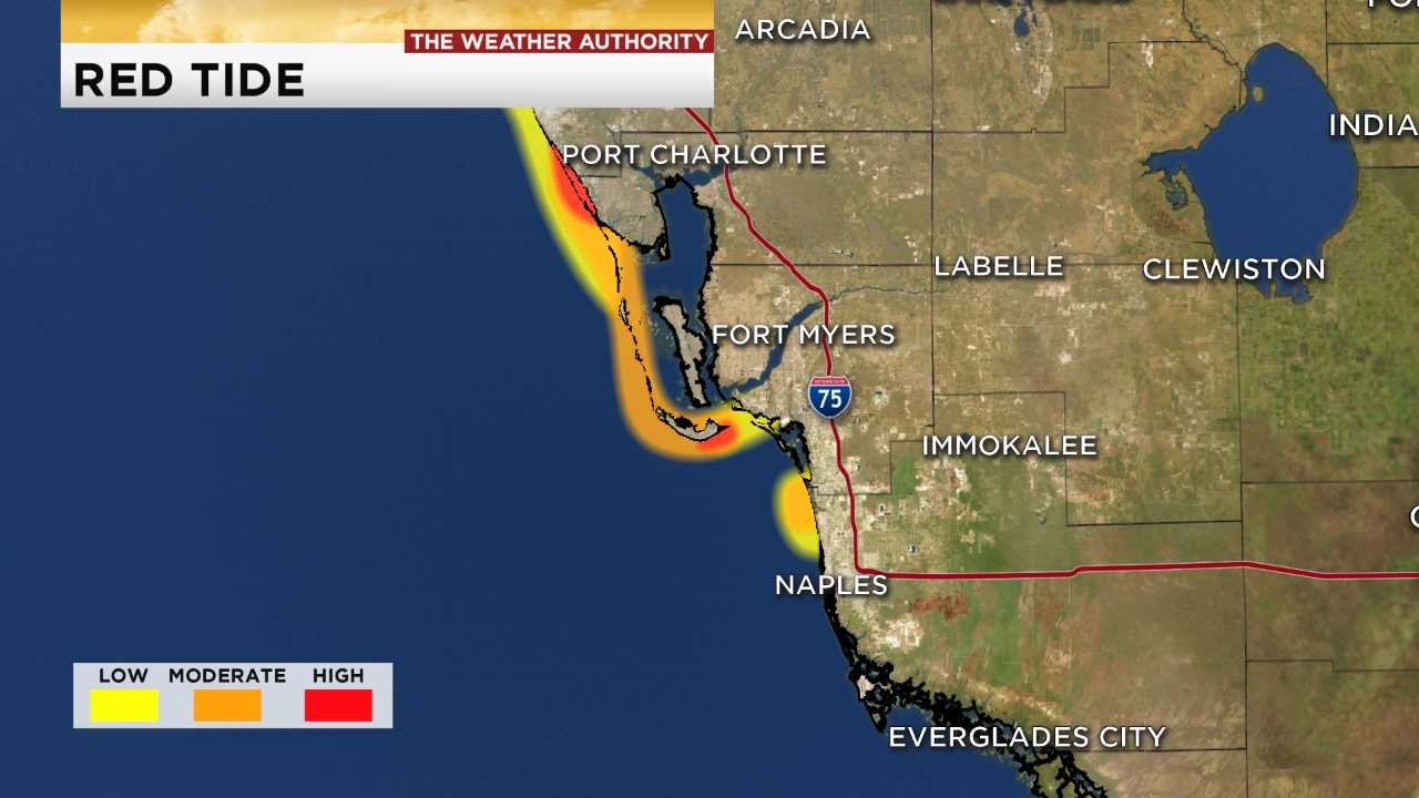 Portion of Fort Myers Beach clear of red tide in latest FWC map