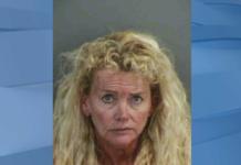 Christina Satin. Mugshot via Collier County Sheriff's Office.