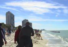 Many gather on Naples Beach on Tuesday, Dec. 24, 2018. Photo via WINK News.