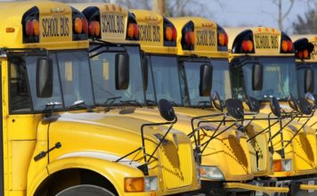 Parked school buses. Photo via AP/Seth Perlman.