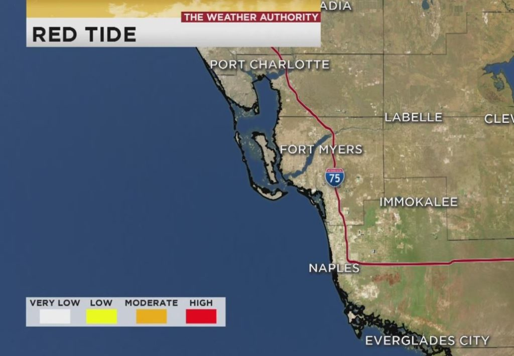 Portions of an FWC red tide map that shows Collier and Lee Counties are clear. Photo via WINK News.