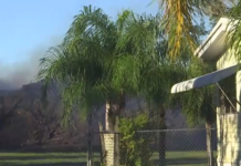 View from Kathleen Damron's backyard on Tuesday. Photo via WINK News.