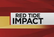 Red Tide Impact. WINK News photo.