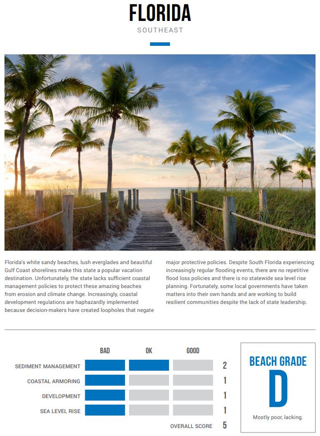 Florida section of the Surfrider Foundation annual report. Photo via WINK News.