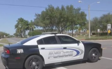 Cape Coral police enforce car insurance requirements. (WINK News photo)