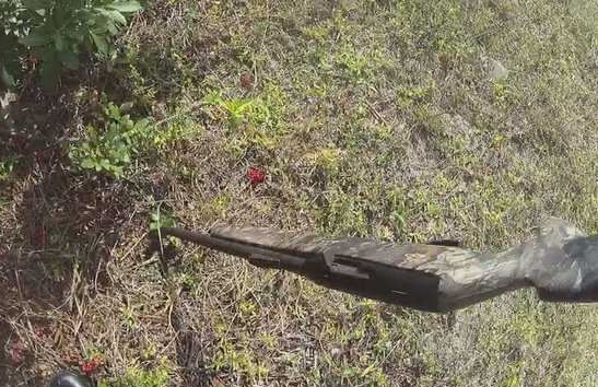 The rifle the teenagers are suspected of stealing after it was ditched in a pepper bush. (WINK News photo)