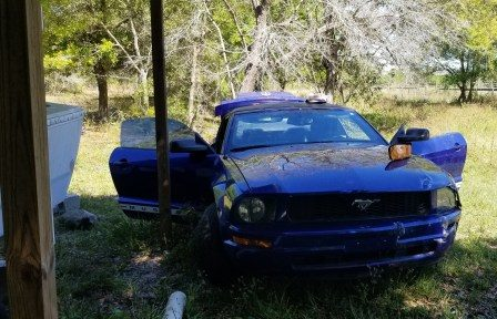 Disabled Mustang. (Credit: CCSO)