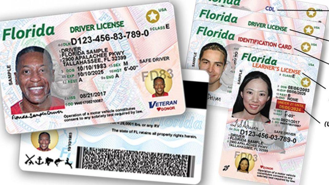 Driver's license. (Credit: FHSMV)