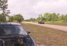 Gutted car lays abandoned in Lehigh Acres. (Credit: WINK News)