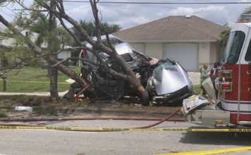 Crash in Cape Coral. (Credit: WINK News)