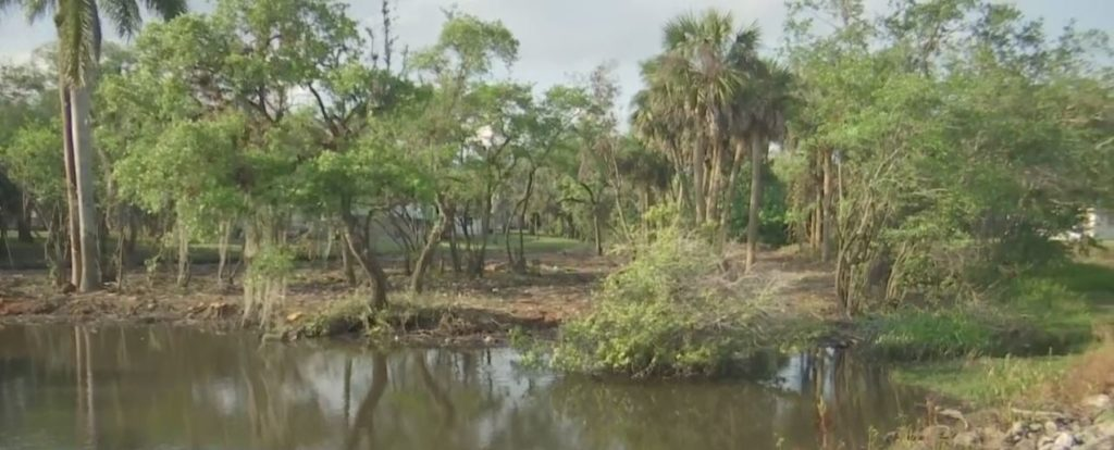 Portion of Billy's Creek where cleanup is underway. (Credit: WINK News)