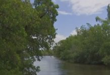 Waterway with bacteria. (Credit: WINK News)