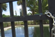 Green pool at the Sunrise Apartments. (Credit: WINK News)