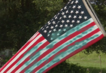 Mailbox, stop signs, the American flag have all been vandalized. (Credit: WINK News)