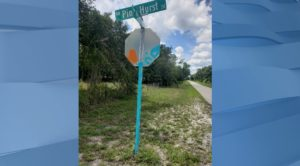 DeSoto County vandalism near Pine Hurst Dr. (Credit: WINK News)