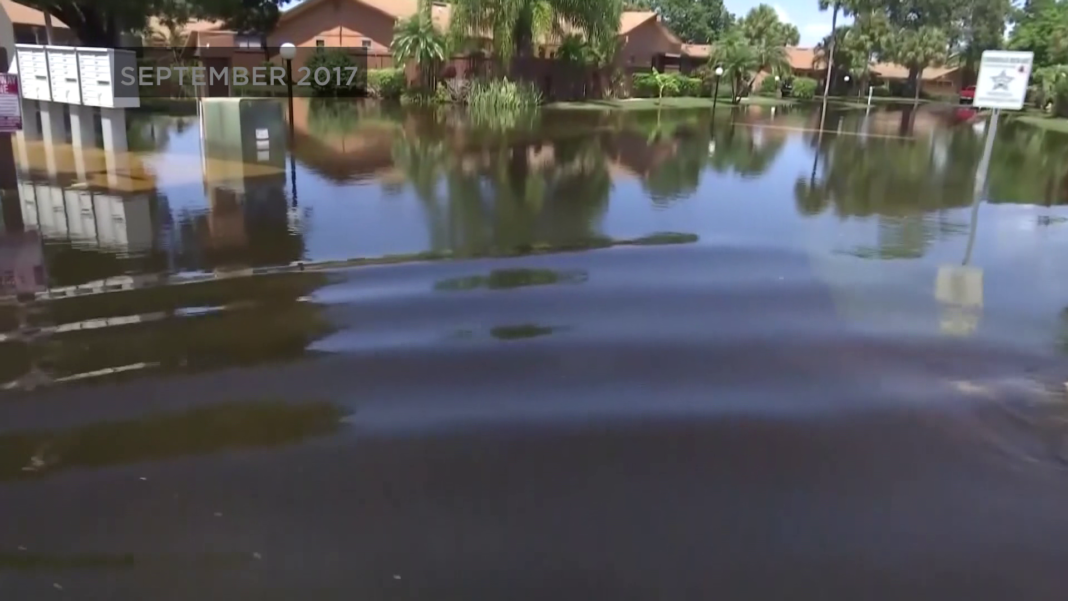 Island Park Road had major flooding following Hurricane Irma. Sept. 2017 (WINK News)