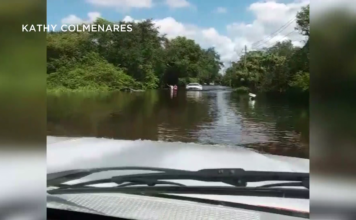 Lehigh Acres resident shows flooding after Hurricane Irma (Kathy Colmenares/WINK News)