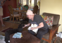 Sandra Scheel has been battling breast cancer for nearly 12 months. She is seen here at her Charlotte County home with her pet. Scheel was scammed out of $2,000. (Credit: WINK News)