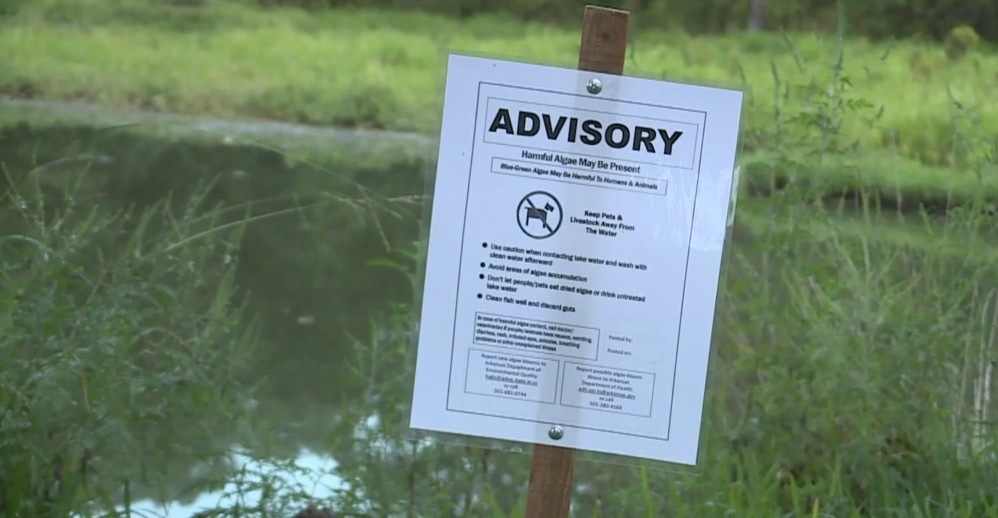 Sign showing an advisory for blue-green algae. (Credit: WINK News)