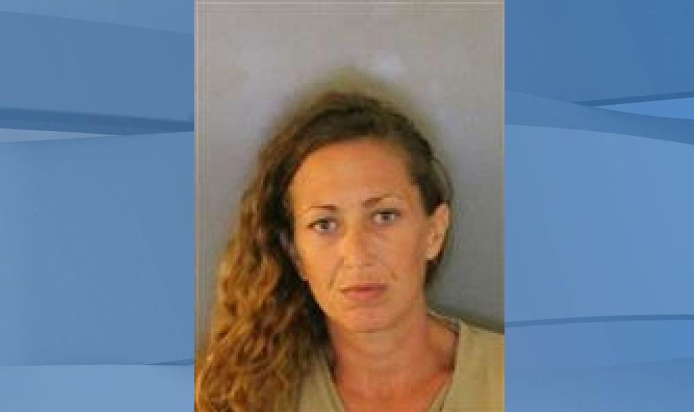 Mugshot of Kristina Perkins, 37. (Credit: Charlotte County Sheriff's Office)