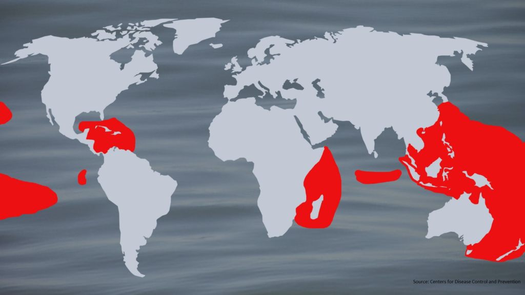 The red area indicates disease-endemic areas of Ciguatera. (Credit: Channing Frampton/WINK News)
