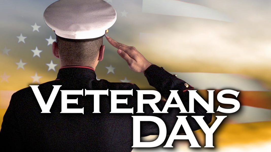 Veteran's Day illustration. (Credit: MGN)