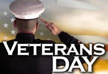 Veteran's Day illustration. (Credit: MGN)