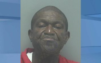 Mugshot of James Gadsden, 64. (Credit: Lee County Sheriff's Office)
