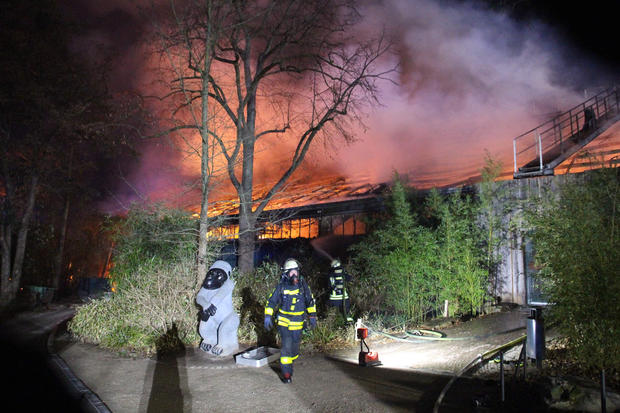 Firemen work at the burning monkey house of the zoo in Krefeld, western Germany, on early January 1, 2020. (Credit: ALEXANDER FORSTREUTER/GETTY via CBS News)