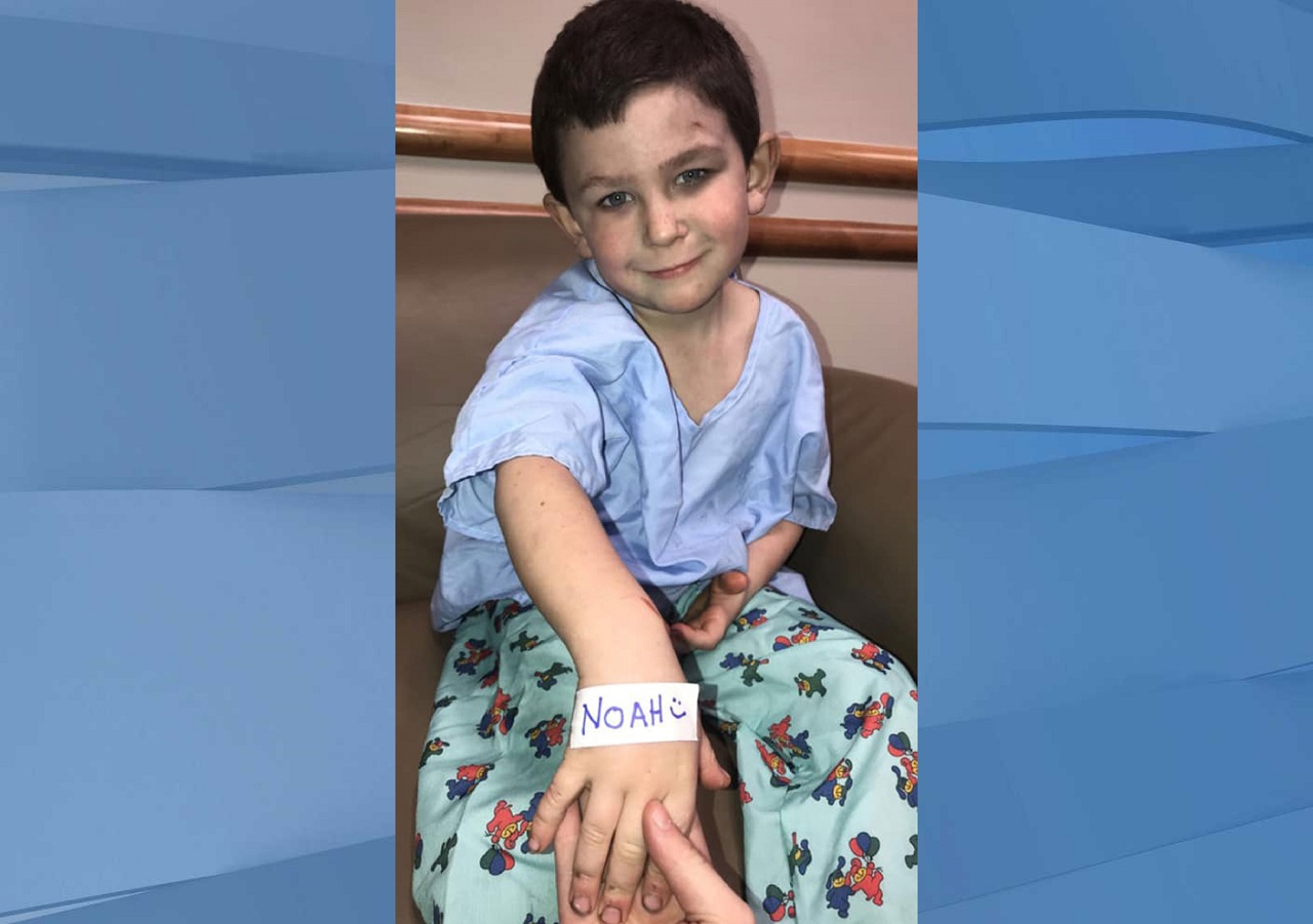 Noah Woods pulled his sister out a window in a house fire and went back in to save the family dog. He's 5 years old