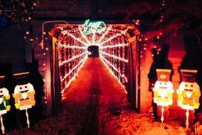 Holiday Light Train