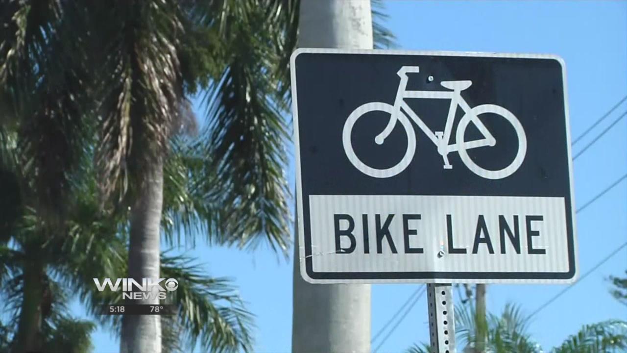bikelanethumb