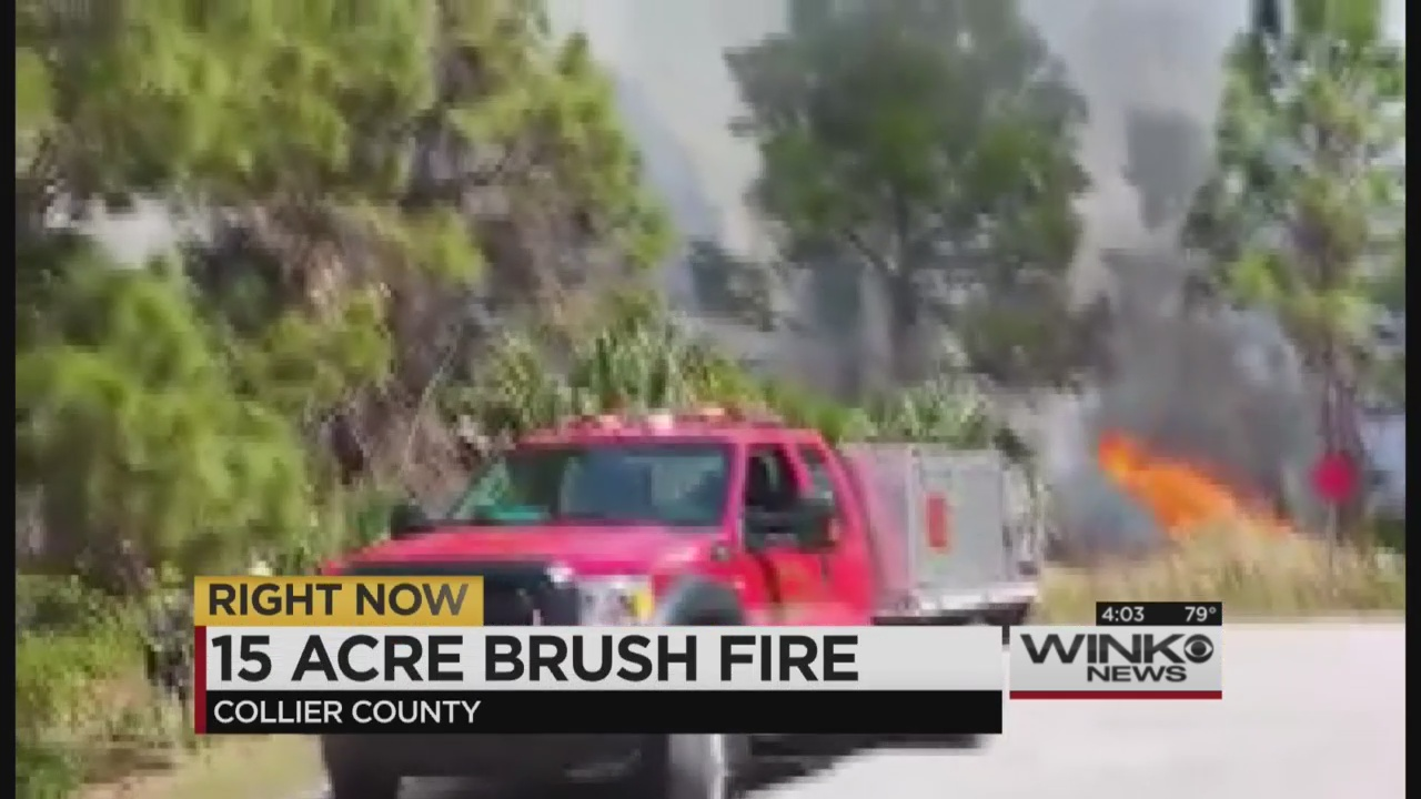 Brush Fire Burns 15 Acres In Collier County Wink News