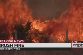 brushfiresickmyers