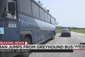 greyhoundbusthumb